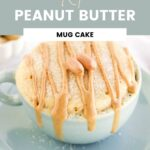 Cake in a light blue mug drizzled with peanut butter and topped with peanuts.