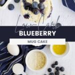 Overhead shot of a blueberry mug cake and all the ingredients to make one.